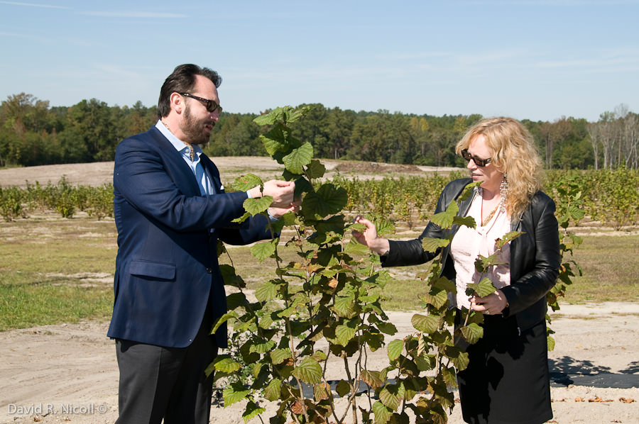 Examining truffle tree with Chef Nick Stellino