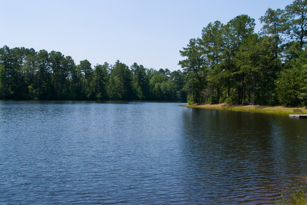 Farm Lake