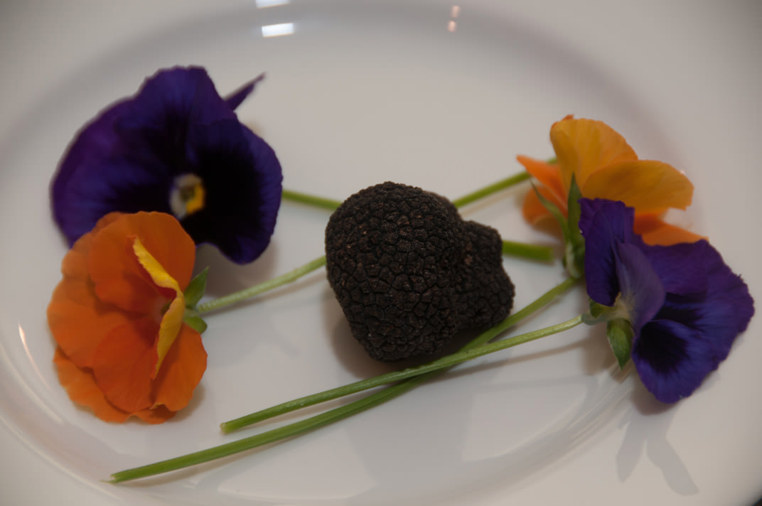 plated black Perigord truffle