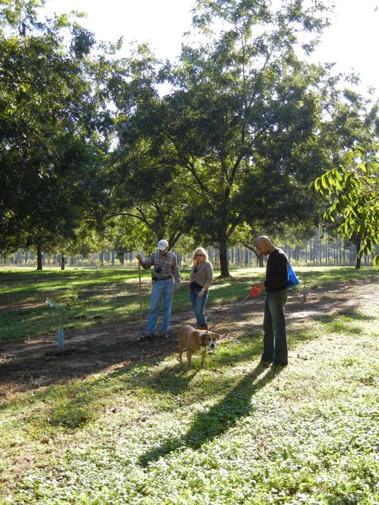 Susan-GA truffle Hunt Dog