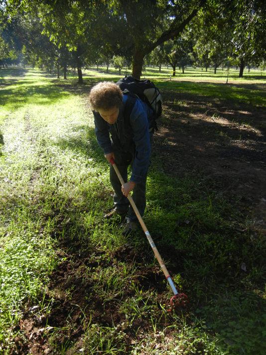 Susan-GA truffle Hunt group dig