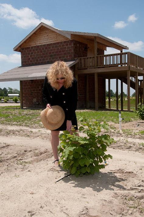Susan Viewing Barn