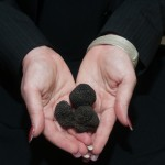 Truffles, Not Just Good for Our Tummies, but for the World!