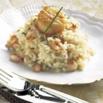 Seared Scallops On Shrimp And Truffle Risotto