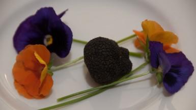 plated black Perigord truffle