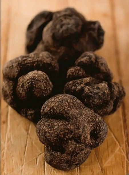 fresh seasonal truffles