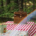 5 Tips for Throwing the Perfect Family Spring Picnic