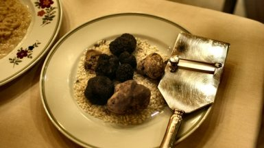 different kinds of truffles on plate